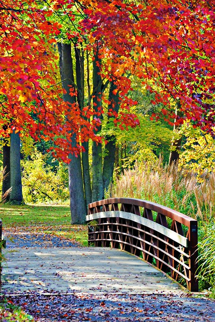 Happy Fall! por Heather