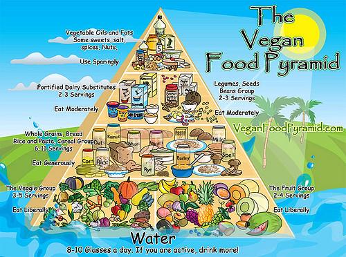 Cuina Vegana.Piràmide nutricional vegana (solidariat)
