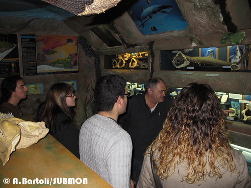 Visita Cau del Tauró 2