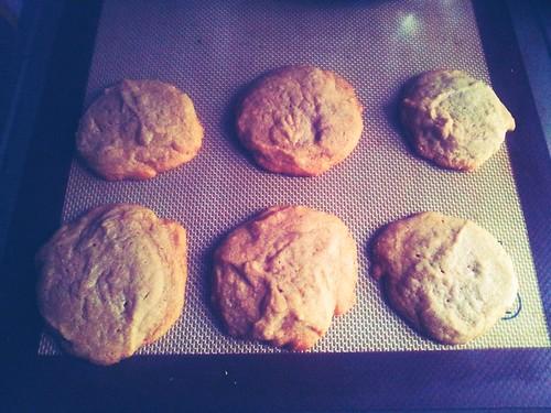 Cookie Butter Cookies
