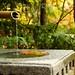 Anderson Japanese Gardens 008
