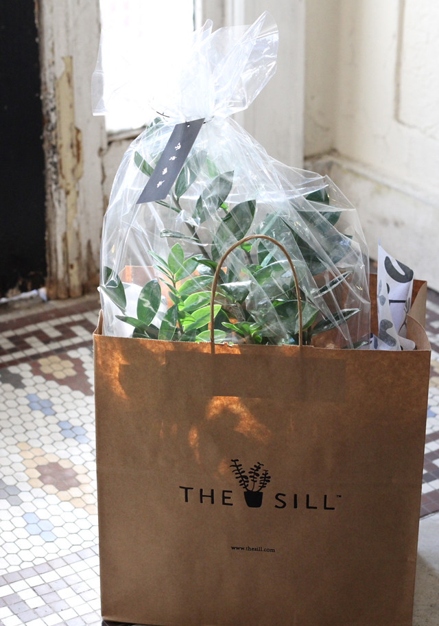 the sill - bag