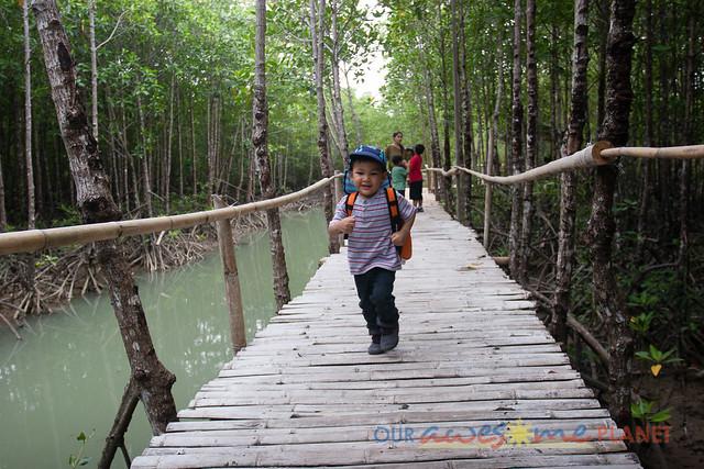 Bakhawan Eco-Park-31.jpg