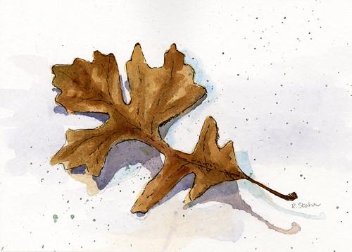 Watercolor Leaf Series003