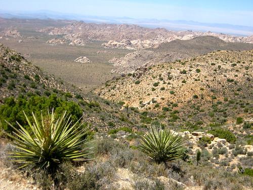 On Ryan Mountain