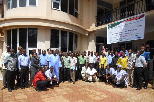 West Africa review and planning workshop 2012 participants (credit: IITA / Kathy Lopez)