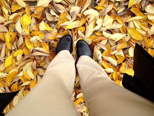 fall leaves and boots