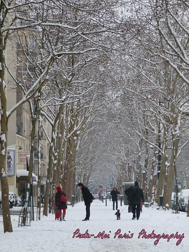 Paris Snow : Ave Daumesnil