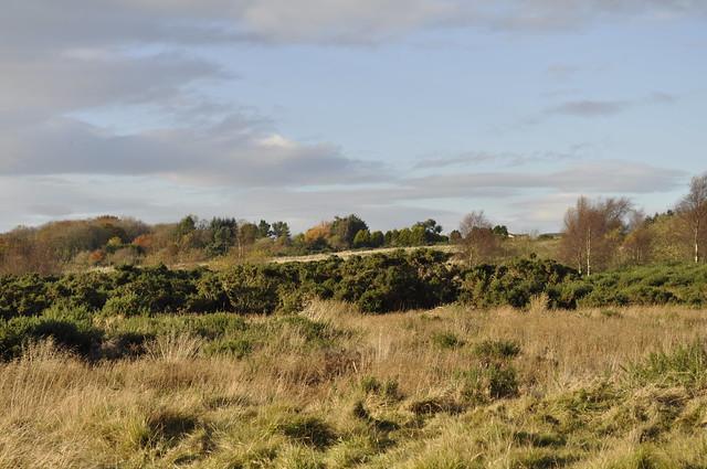 2012-11-10 Scotstown moor 04