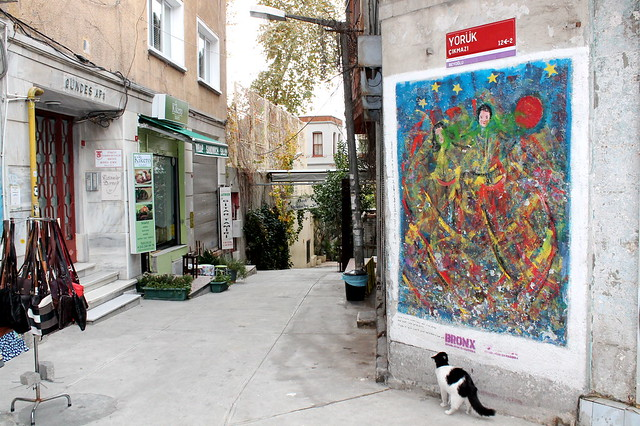 Cats appreciate street art, too
