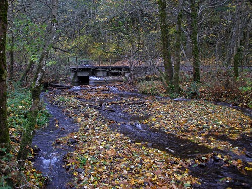 railroad bridge near hartman pond 2
