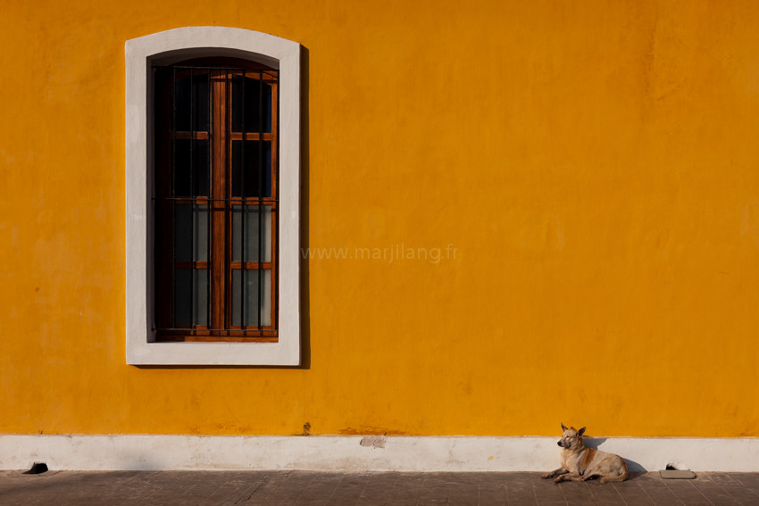 Window, Pondicherry