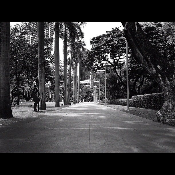 That moment when all is still. Repost in #bnw now. @digiprint_ph #monochrome #blackandwhite #gf_philippines #instamood #instaphilippines #instago #igersasia #igersmanila #cityscape #manila #makati #park #jj_forum #follow #lifetreasuresinprint #digiprintph