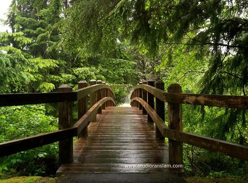 Evergreen_Bridge