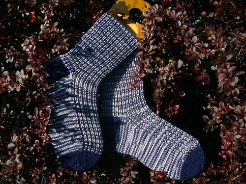 karly socks 3