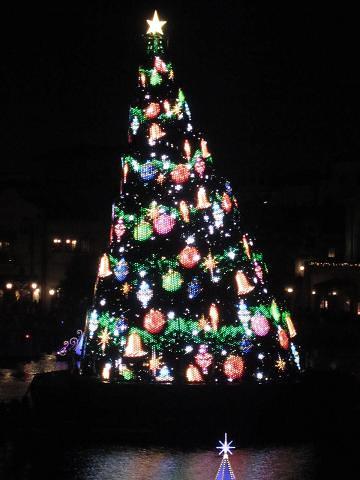 TDR クリスマス 005