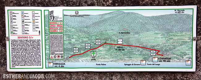 Hiking Cinque Terre Trails along the coast   What to Do in Cinque Terre Italy