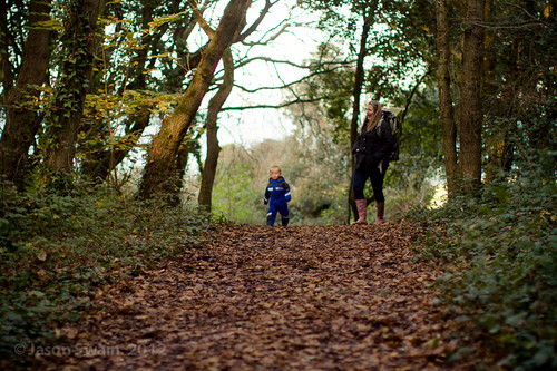 Autumn walks at Fort Victoria Country Park