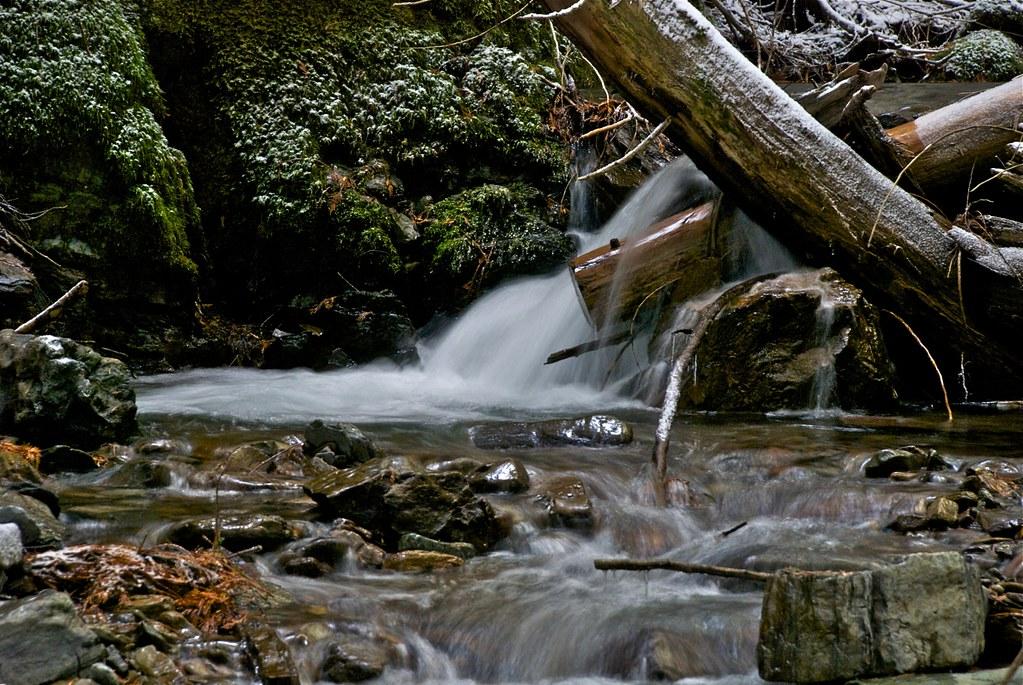 Spring Creek in November