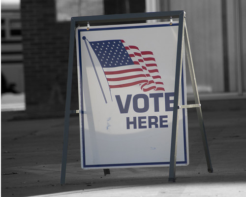 30 Days of Gratitude:  Day 6 -- Right to Vote