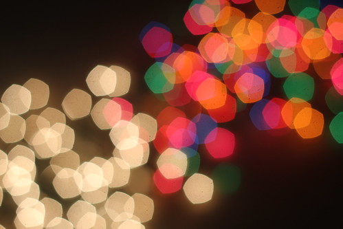 it's bokeh season, y'all!!!!