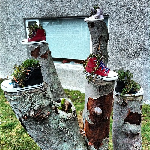 Cuteness! #flowers in #old #shoes
