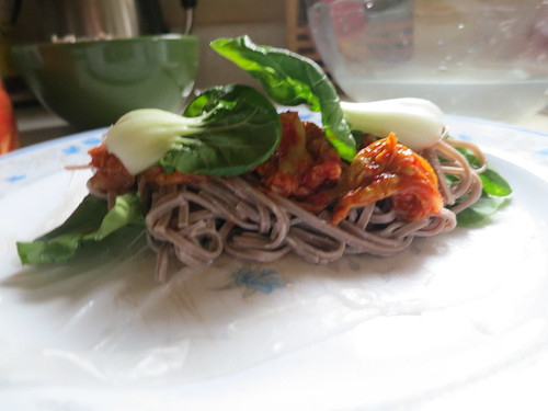 Chilled soba noodle salad roll