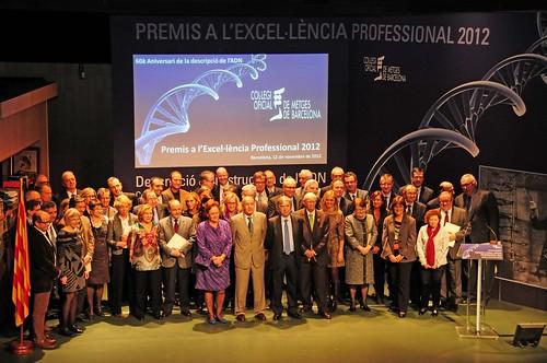 Premis a l'Excel·lència Professional 2012Premis a l'Excel·lència Professional 2012