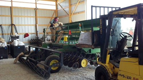 loading spring wheat seed