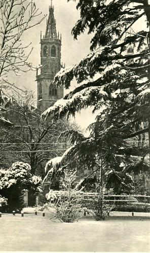 postcard - bolzano - piazza walter - 1953