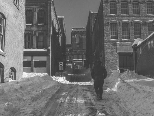Snowy Grannan Lane