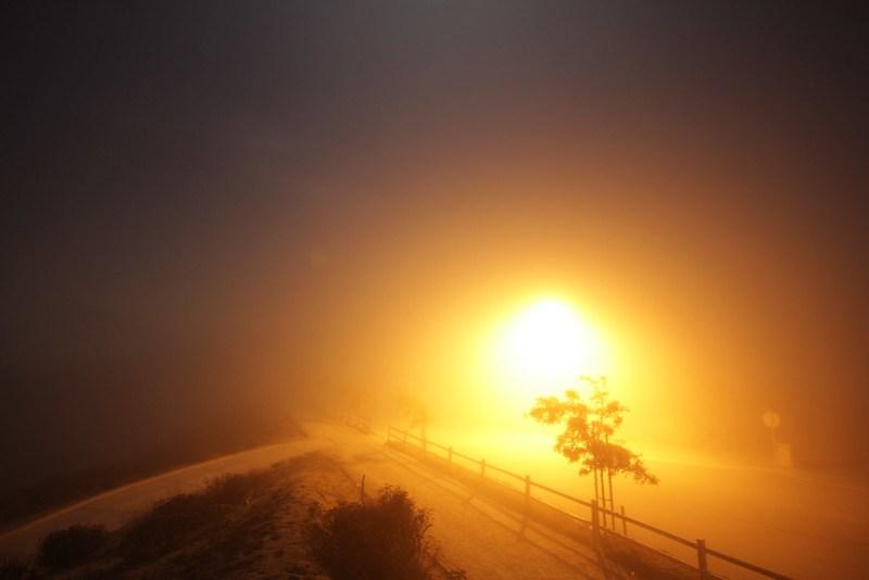 Fog Ablaze