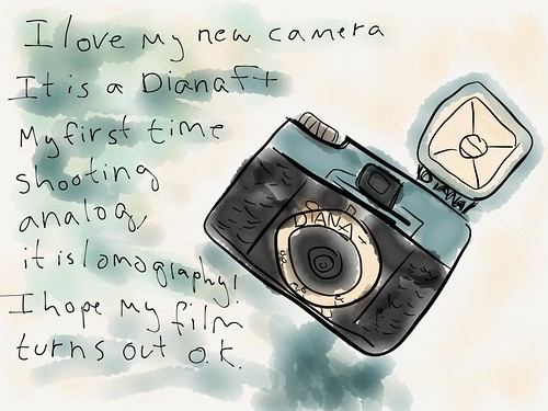 Digital journal about an analog camera