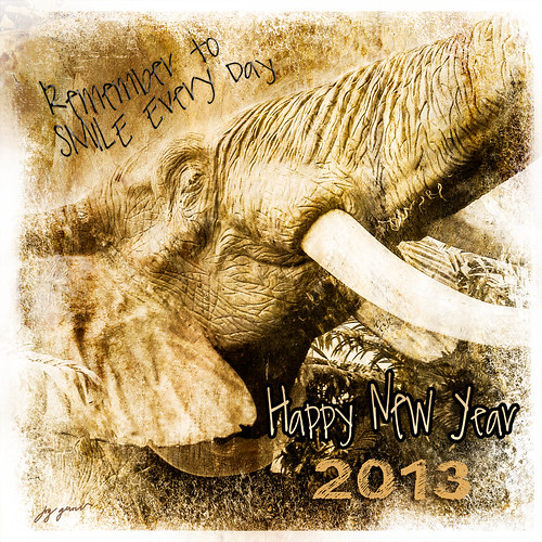 REMEMBER to Smile in 2013 xo by Imagemakercan - The Lensdancer