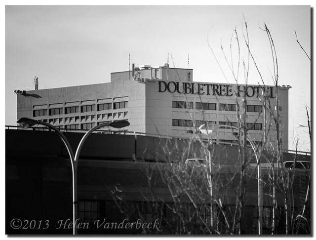 The Doubletree Hotel