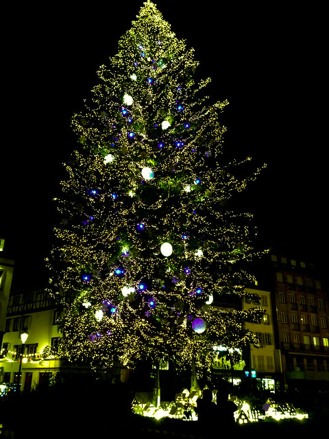 Strasbourg - Christmas tree in the Place Kleber