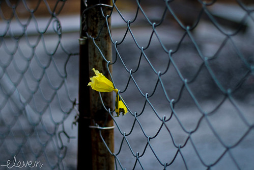 Yellow Bow ~ by Eleven ~ NYC~ on and off