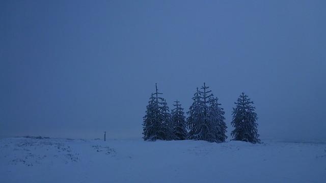 Hergest Ridge, Ski Touring, Kington, Gladestry