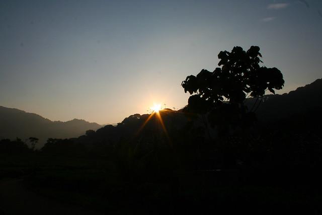 sunrise at Nyungwe Forest Lodge 2