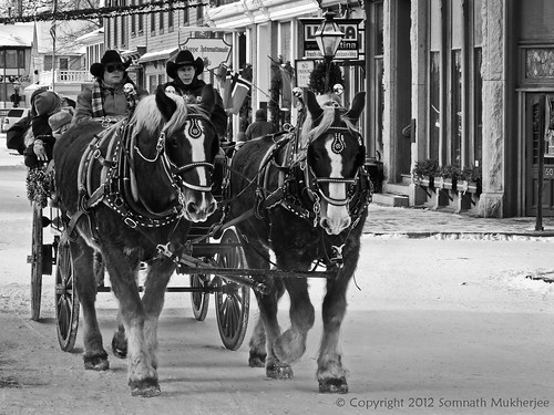 The Horse Cart | Georgetown, CO | December, 2012 by Somnath Mukherjee Photoghaphy