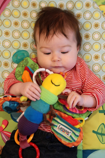 Harper's favorite toy