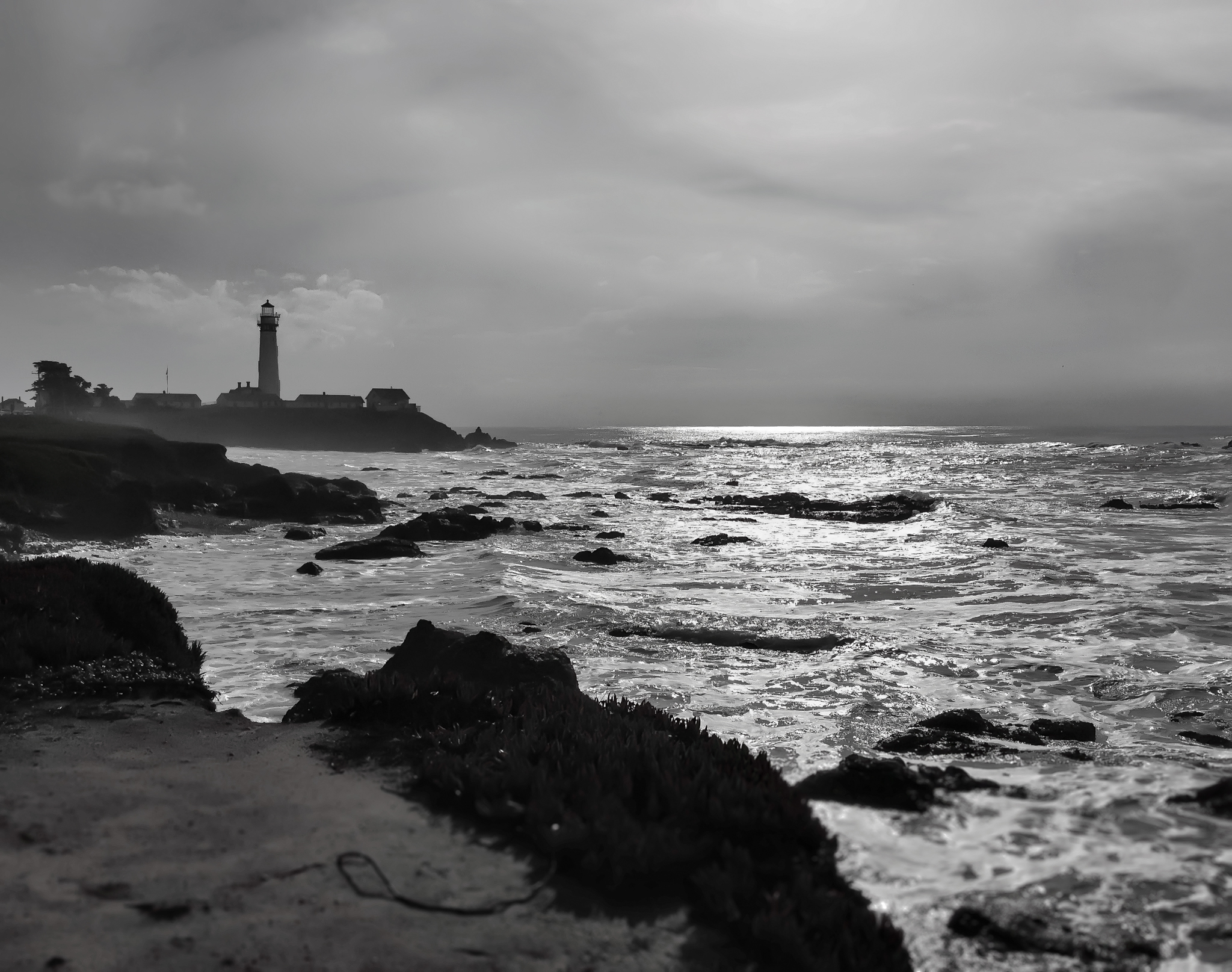On the Edge - Pigeon Point - 2012