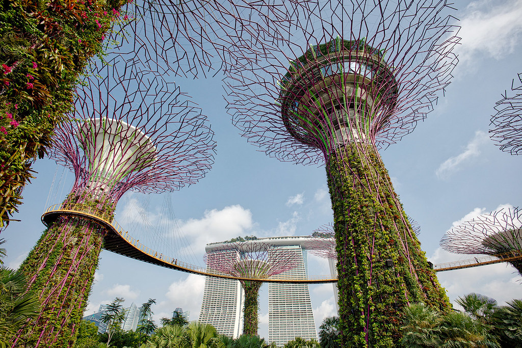 Supertree Grove, Gardens by the Bay, Singapore.