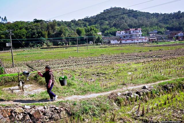 Farmer in Liang Qi
