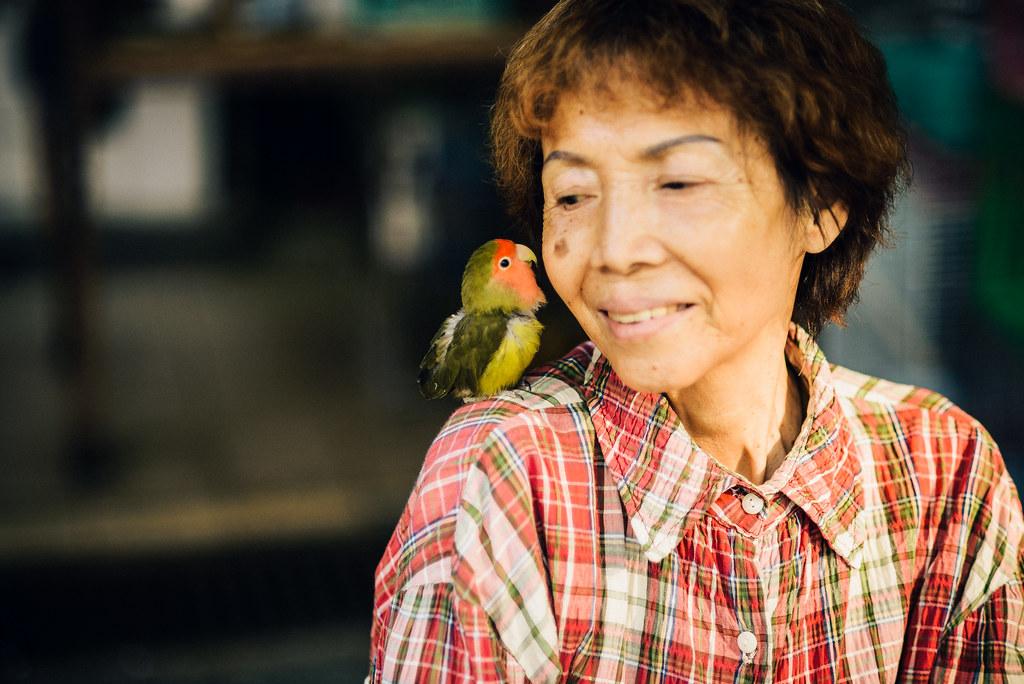 Yuen Po Street Bird Garden-20