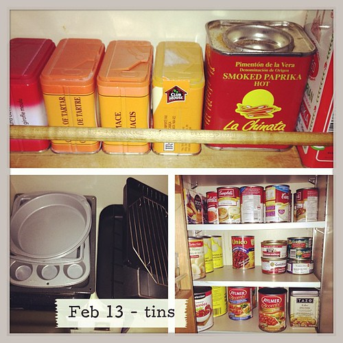 Feb 13 - tins {cake & baking tins; spices in tins; tinned goods in my pantry} #photoaday