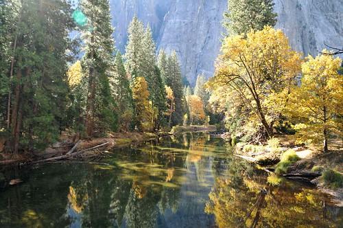 USA, PN Yosemite 16