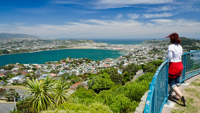 Can't beat Wellington on a sunny day