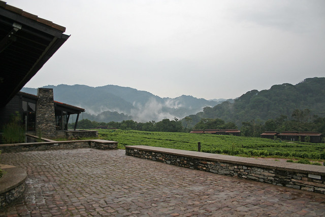 entrance at Nyungwe Forest Lodge