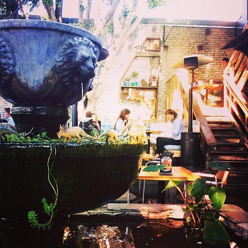 Spot the Dinosaurs @ Home Restaurant, Loz Feliz, LA